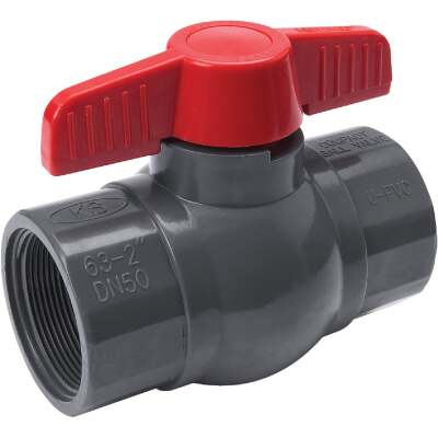 ProLine 2 In. FIP X 2 In. FIP PVC Quarter Turn Ball Valve